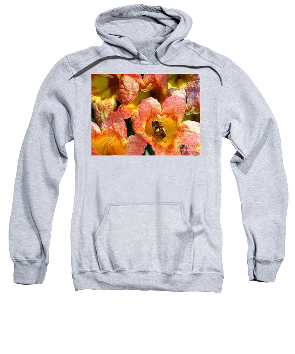 Nature Sweatshirt featuring the photograph Caught Up In The Work by Lucyna A M Green