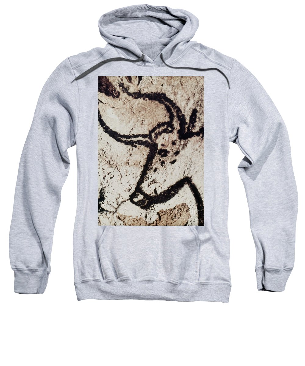 Bull Sweatshirt featuring the photograph Cave Art: Lascaux by Granger