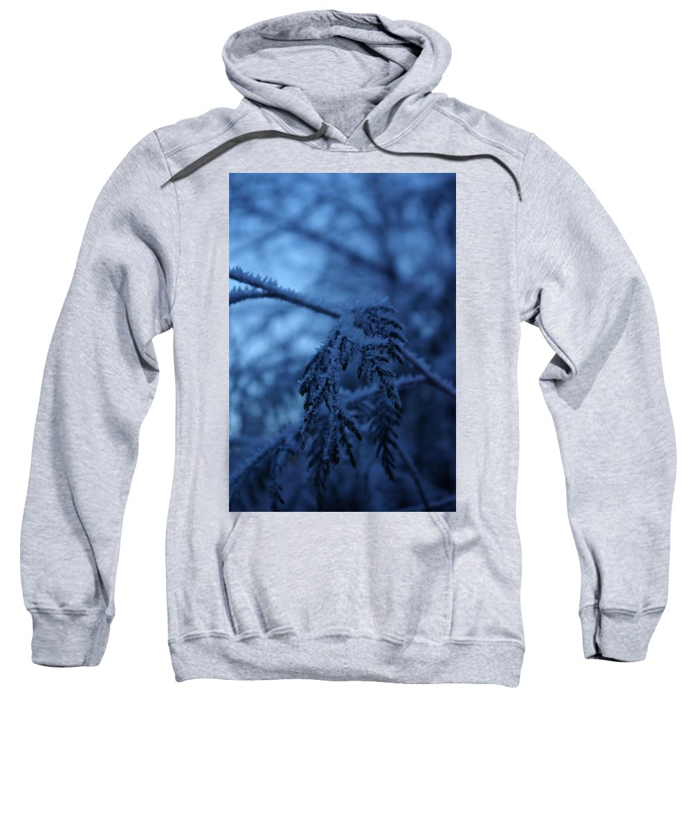 Cedar Sweatshirt featuring the photograph Cedars Of Ice II by Cindy Johnston