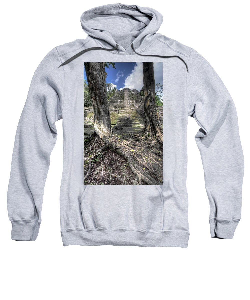 Lamanai Sweatshirt featuring the photograph Celestial Roots by Travis Elder