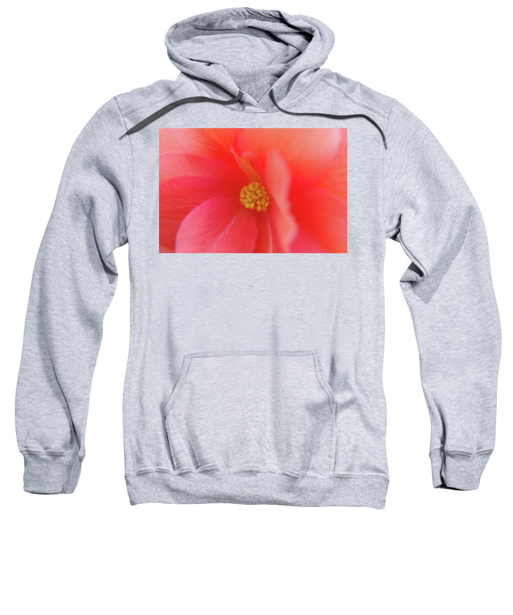 Adria Trail Sweatshirt featuring the photograph Centerpiece by Adria Trail