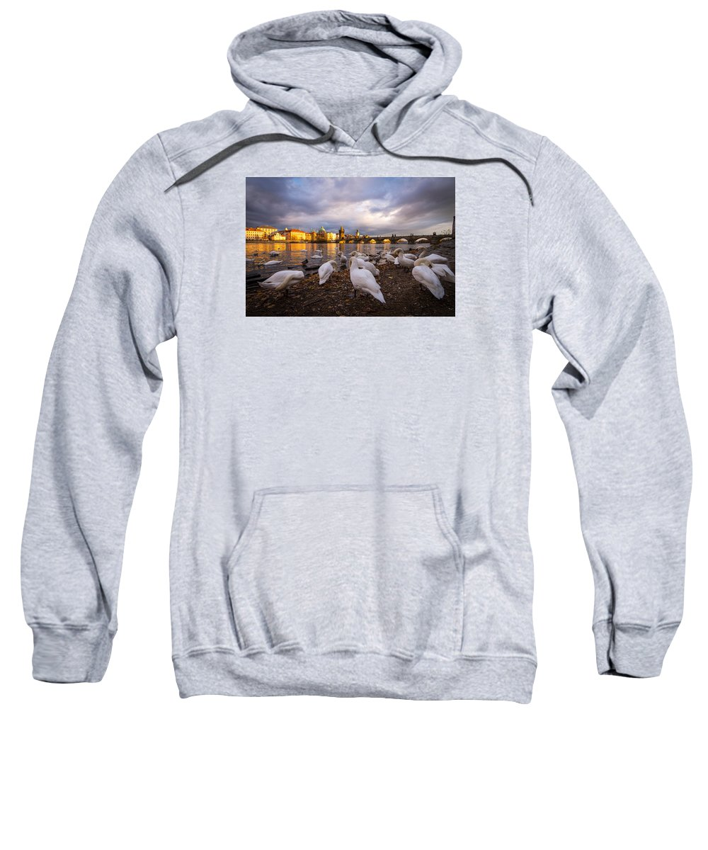 Swan Sweatshirt featuring the photograph Charles Bridge, Prague With Swans by Adam Stocker