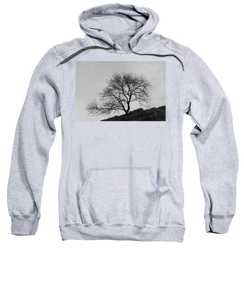 Tree Sweatshirt featuring the photograph Cheddar Gorge Tree by Lauri Novak