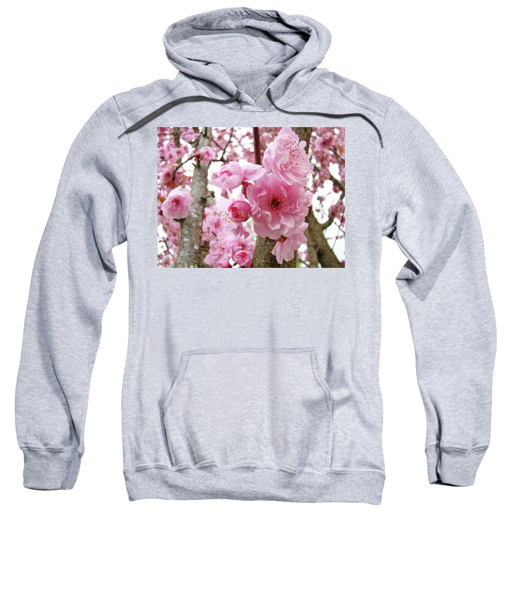 Nature Sweatshirt featuring the photograph Cherry Blossoms Art Prints 12 Cherry Tree Blossoms Artwork Nature Art Spring by Baslee Troutman