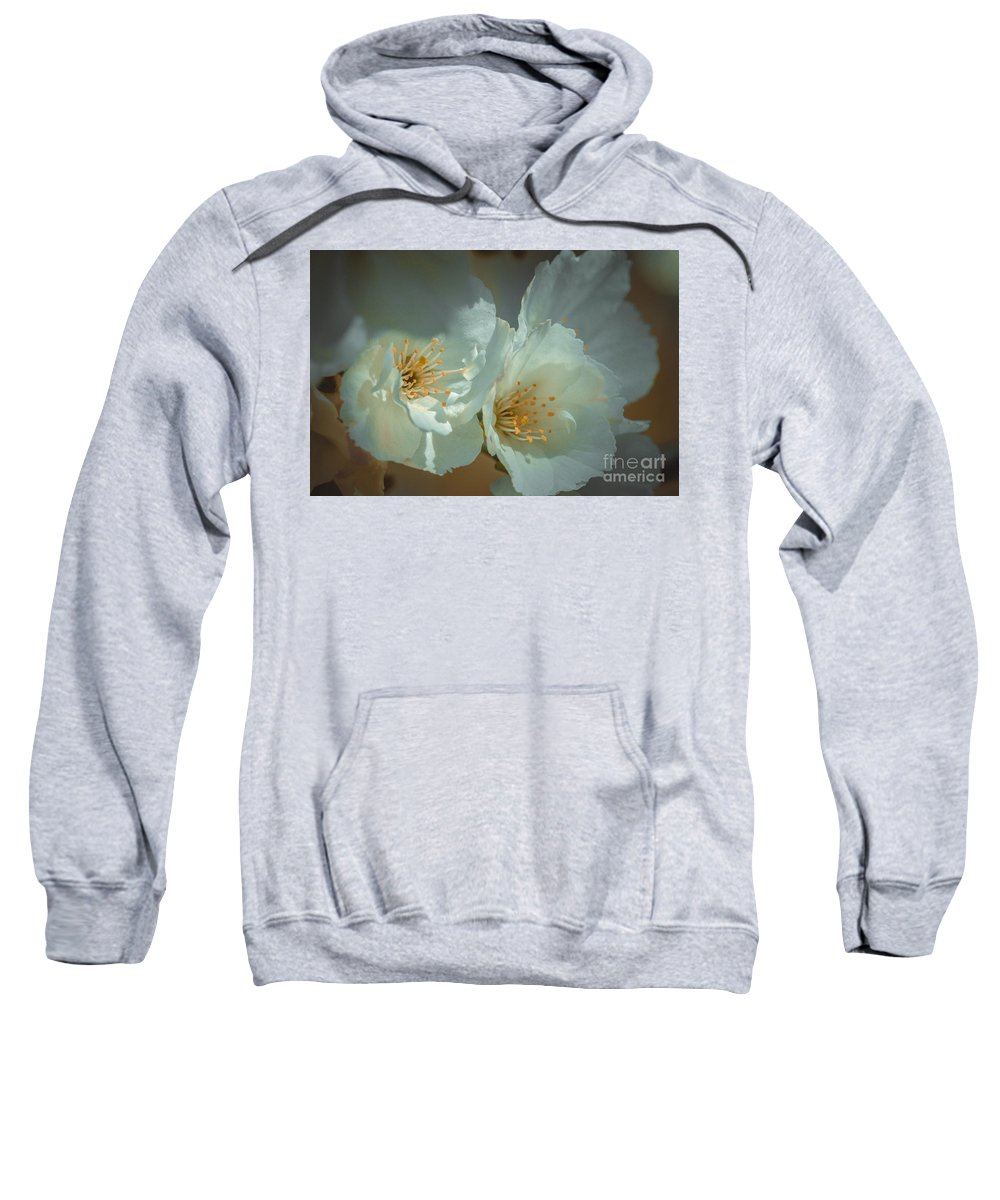 Cherry Blossom Sweatshirt featuring the photograph Cherryblossom Flowers by Marc Daly