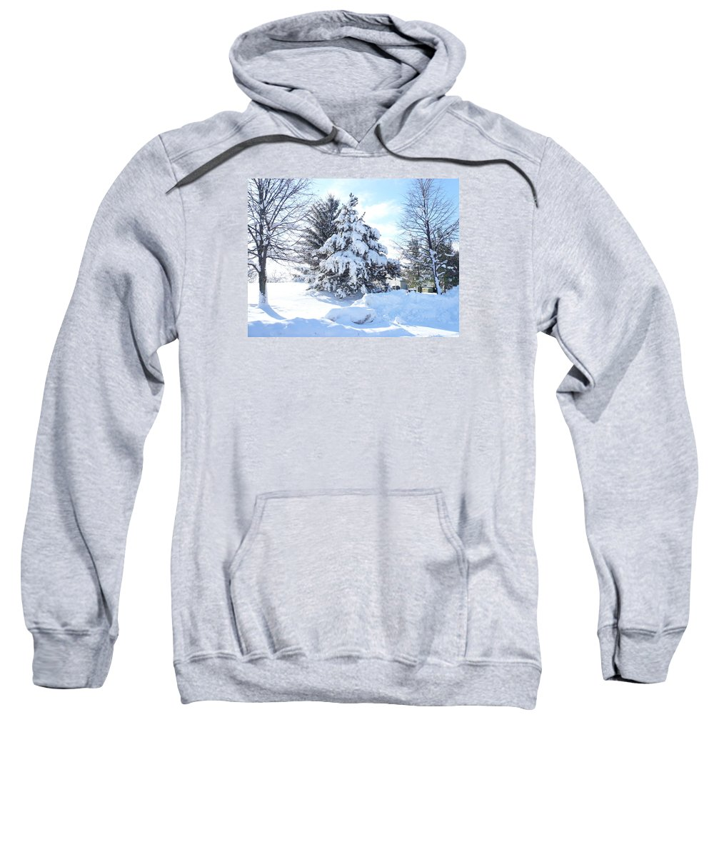 Tree Sweatshirt featuring the photograph Christmas Tree by Connie Young