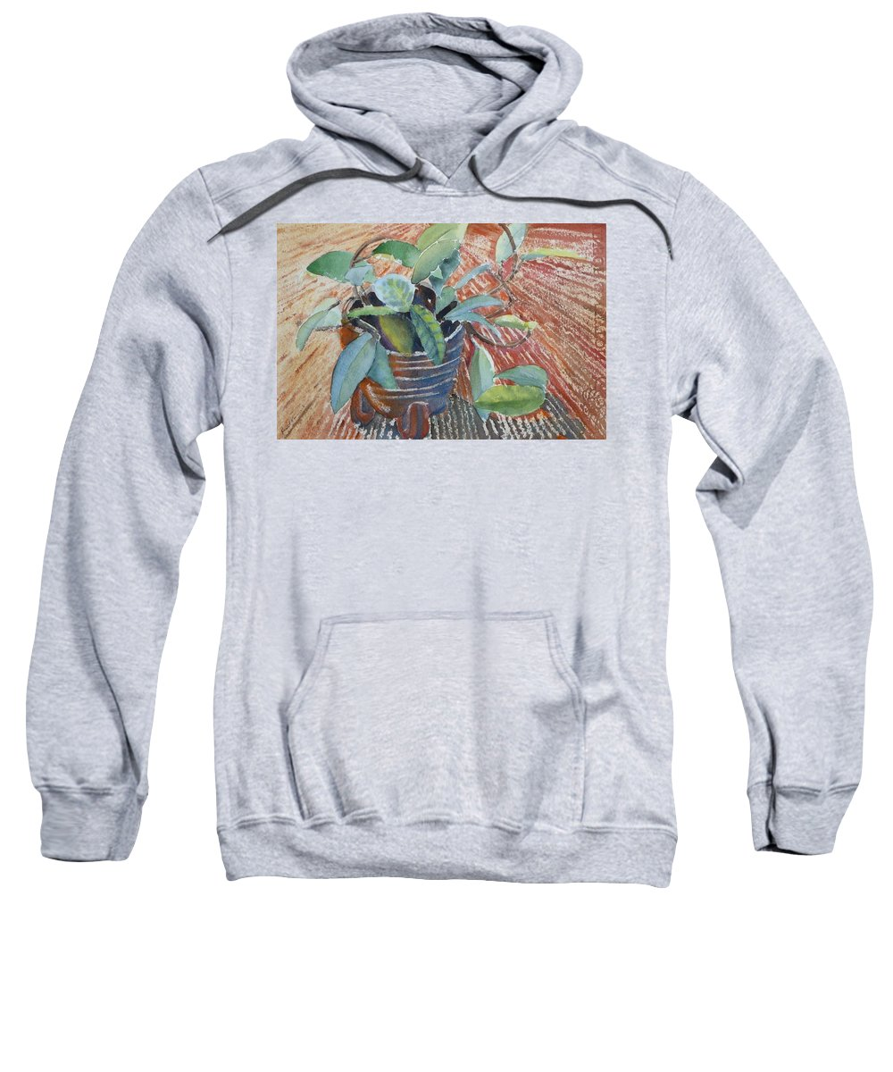 Vine Sweatshirt featuring the painting Clay Pot by Ruth Kamenev