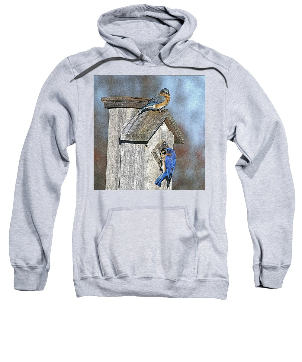 Nature Sweatshirt featuring the photograph Cleaning House by Robert Pearson