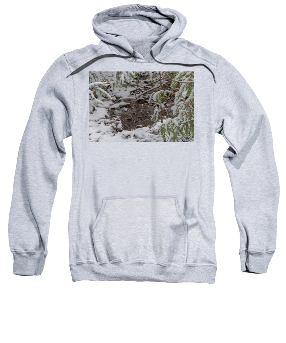 Marquette Sweatshirt featuring the digital art Closer Puddle by Bradley J Nelson