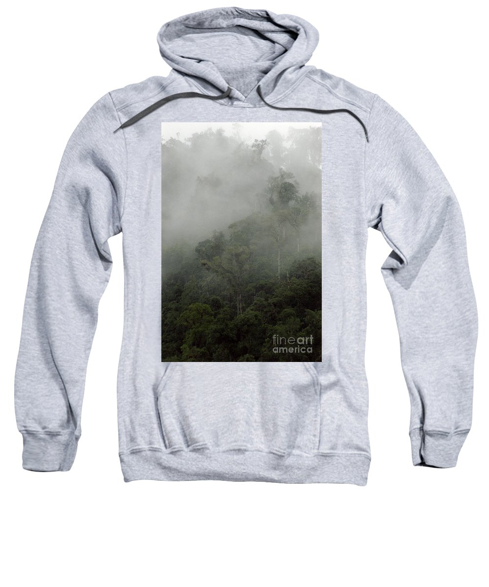 Rainforest Sweatshirt featuring the photograph Cloud Forest by Kathy McClure