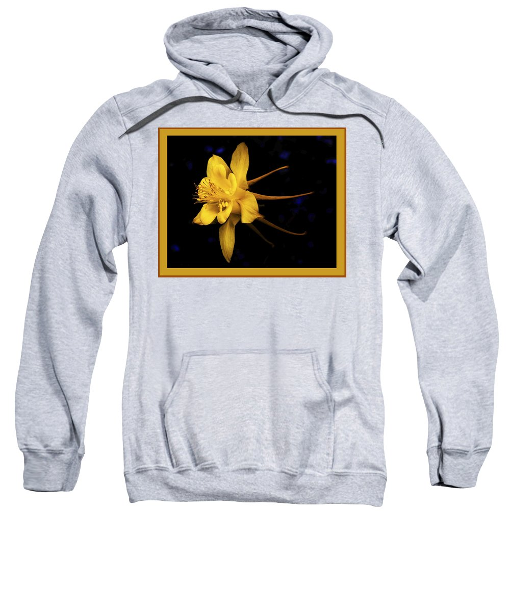 Flower Sweatshirt featuring the photograph Colombine 1 by Jack Williamson