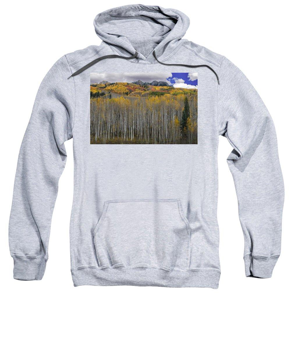 Colorado Sweatshirt featuring the photograph Colorado Splendor by Gary Lengyel