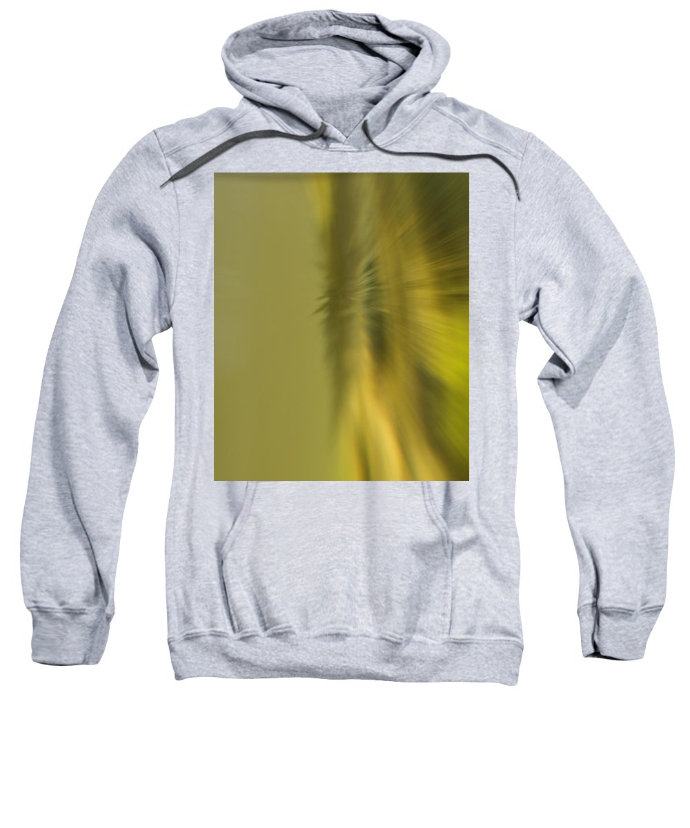 Blur Sweatshirt featuring the photograph Coloured Blur by Cliff Norton