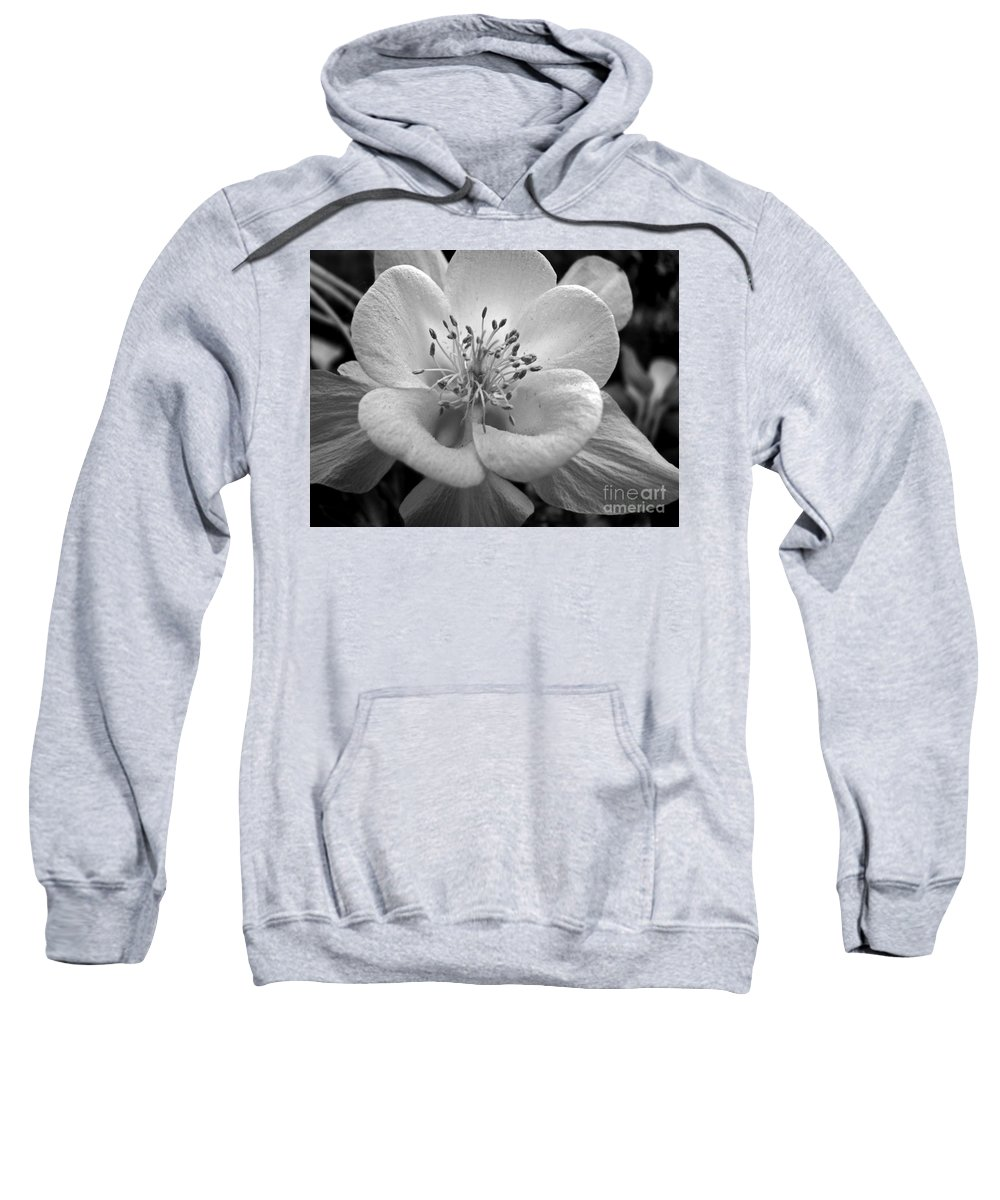 Flowers Sweatshirt featuring the photograph Columbine by Amanda Barcon