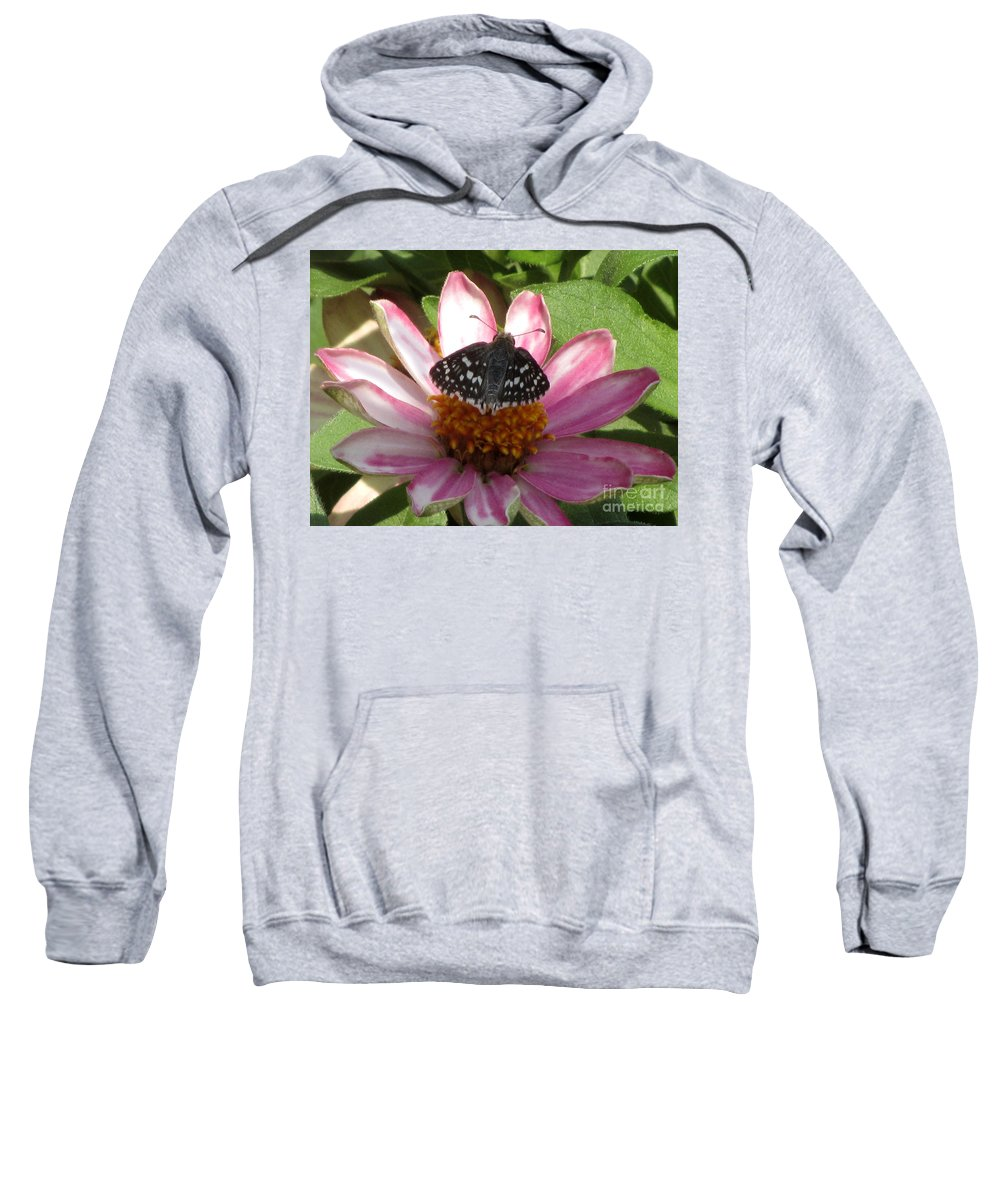 Insect Sweatshirt featuring the photograph Common Checker Butterfly by Donna Brown