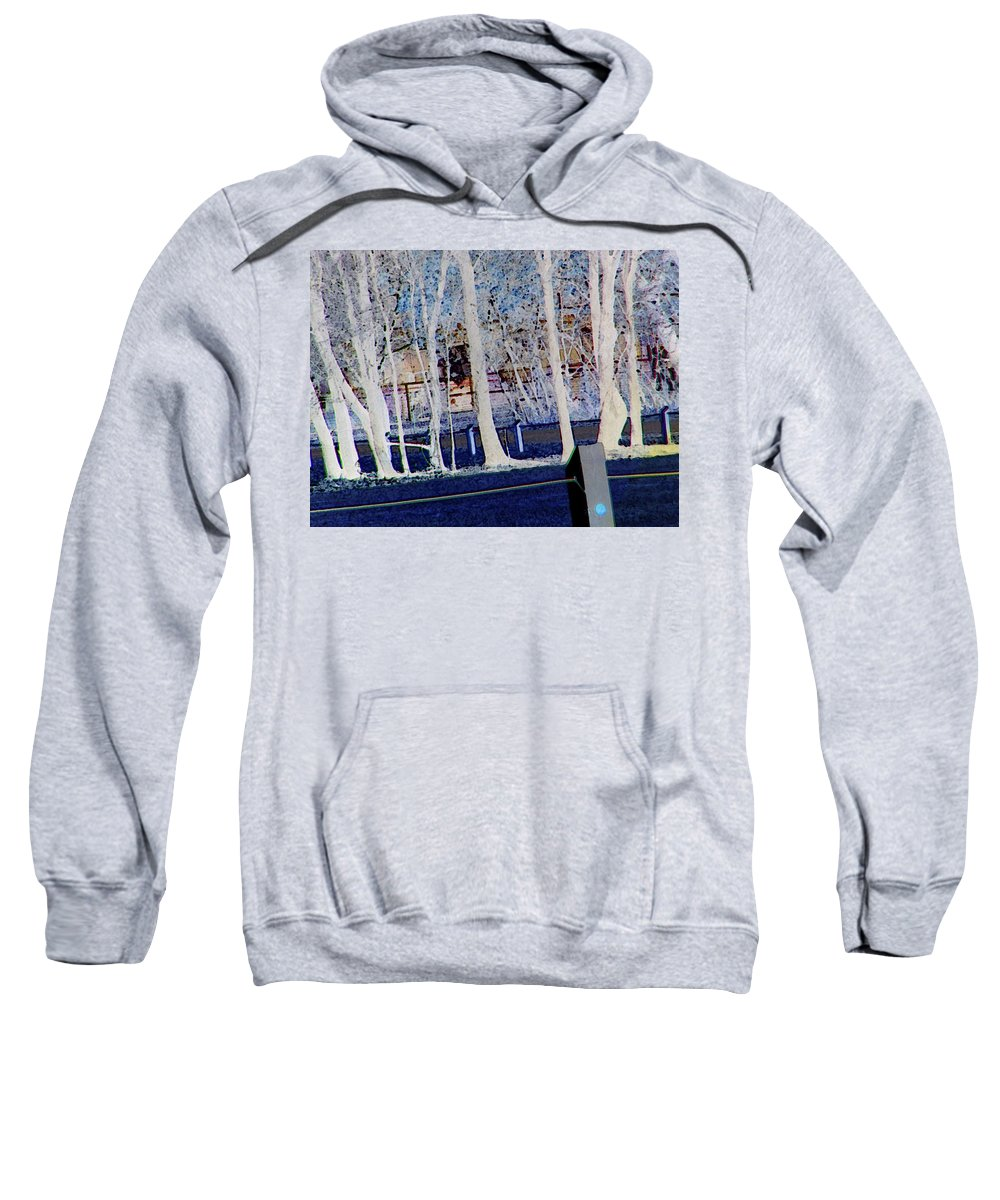 Abstract Sweatshirt featuring the digital art Composition Of Trees by Lenore Senior