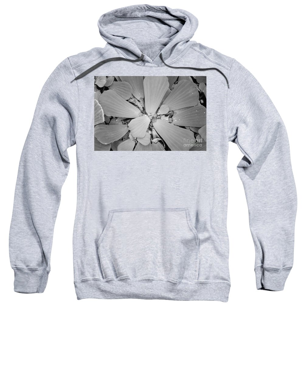 Nature Sweatshirt featuring the photograph Conservatory Nature In Black And White 1 by Carol Groenen