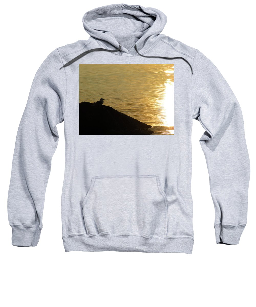 Dove Sweatshirt featuring the photograph Contemplation II by Kelly Mezzapelle