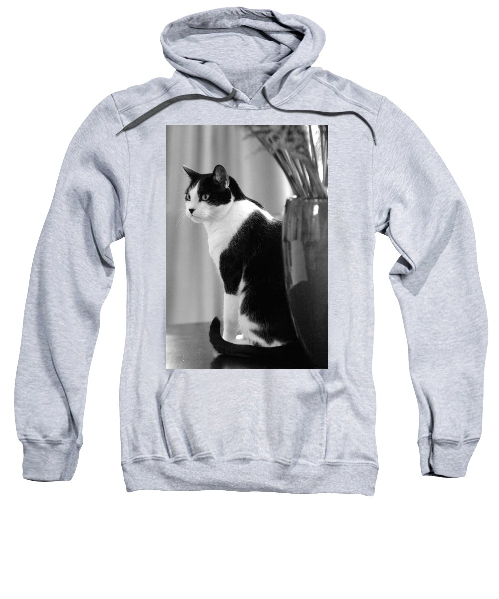 Black And White Sweatshirt featuring the photograph Contemplative Cat Black And White by Jill Reger