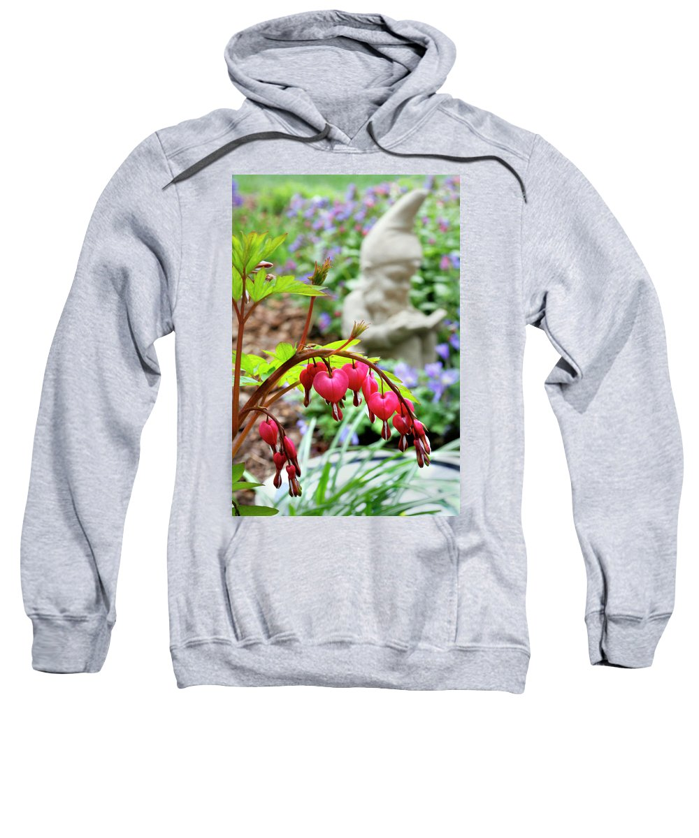 Sweet Sweatshirt featuring the photograph Content Gnome With Bleeding Hearts by Marilyn Hunt