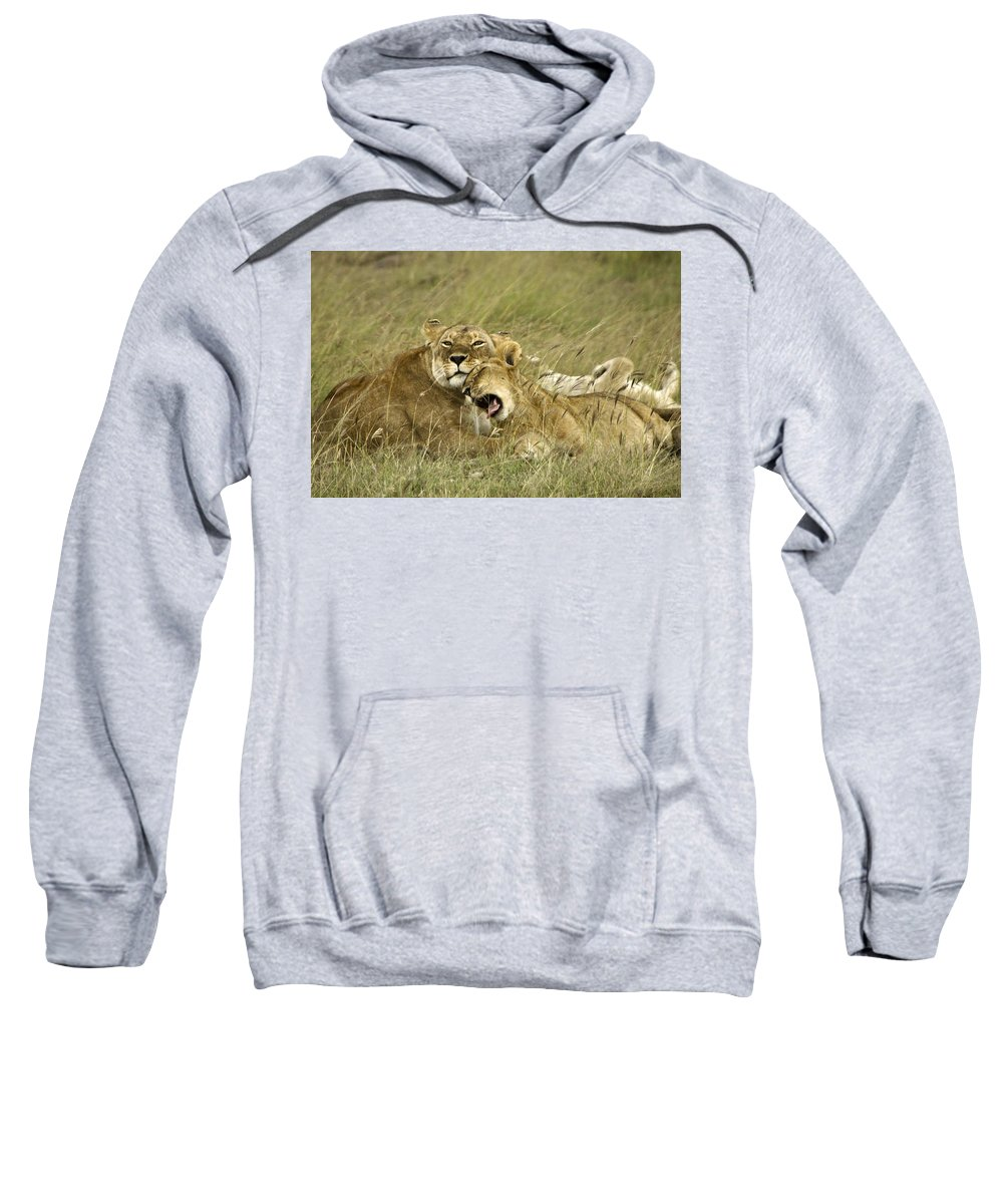 Africa Sweatshirt featuring the photograph Contentment by Michele Burgess