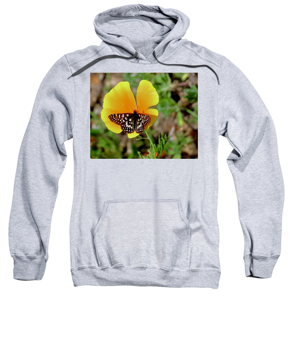Flowers Sweatshirt featuring the photograph Contrast by Erin Finnegan