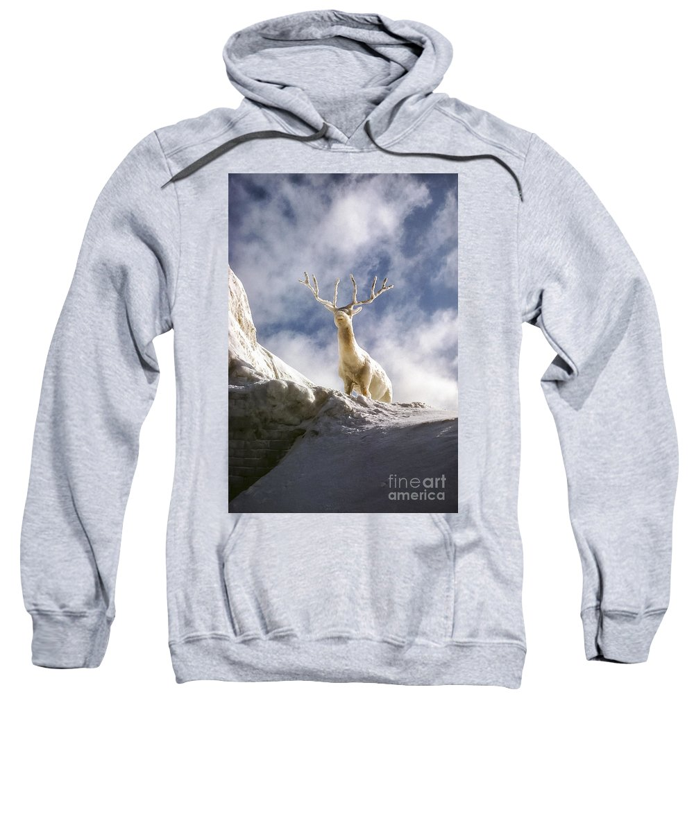 Ice Festival Sapporo Japan Carving Carvings Snow Snowscape Snowscapes Deer Festivals Sculpture Sculptures Odds And Ends Sweatshirt featuring the photograph Cool Deer by Bob Phillips