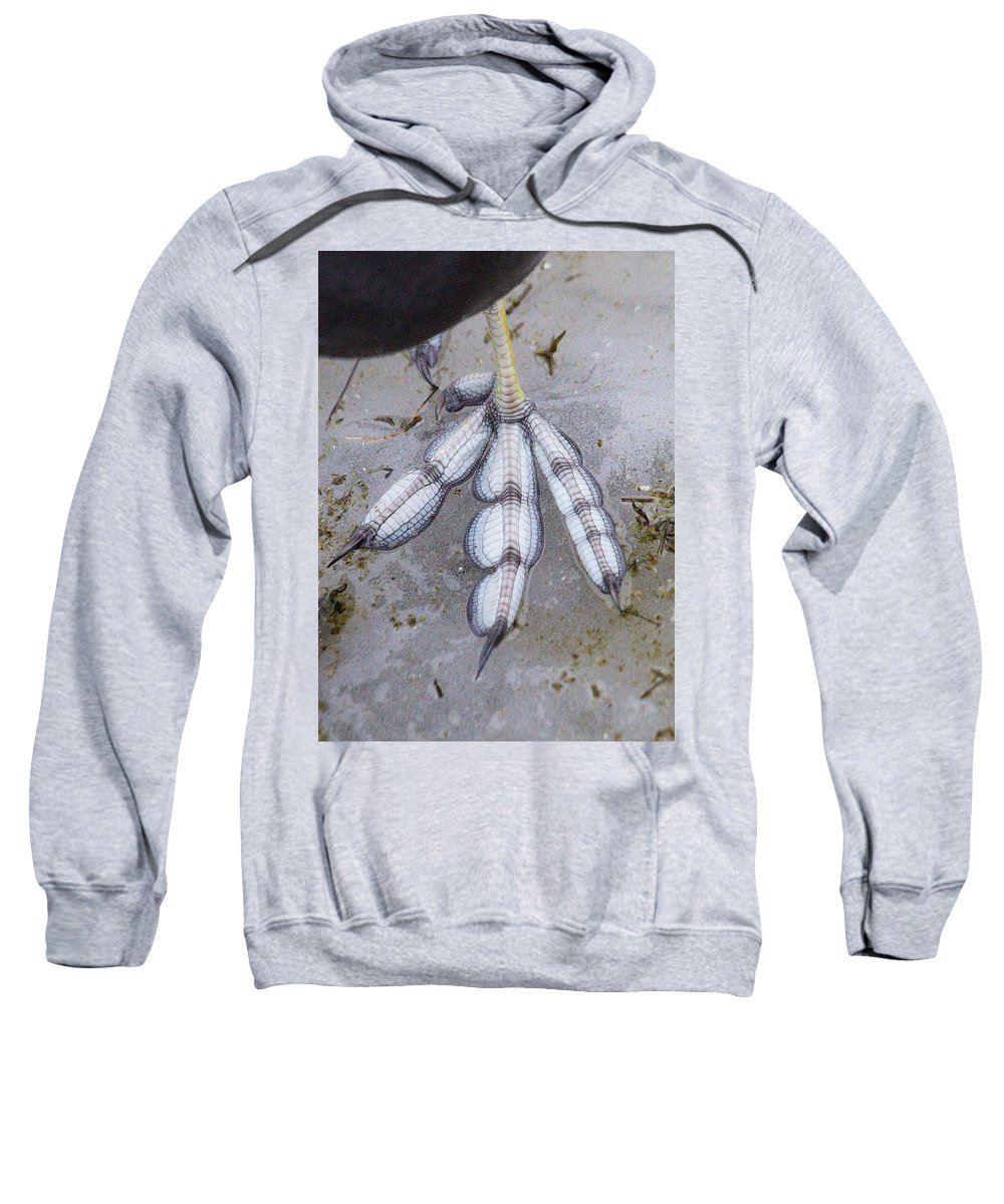 Coot Sweatshirt featuring the photograph Coot Foot by Bob Kemp