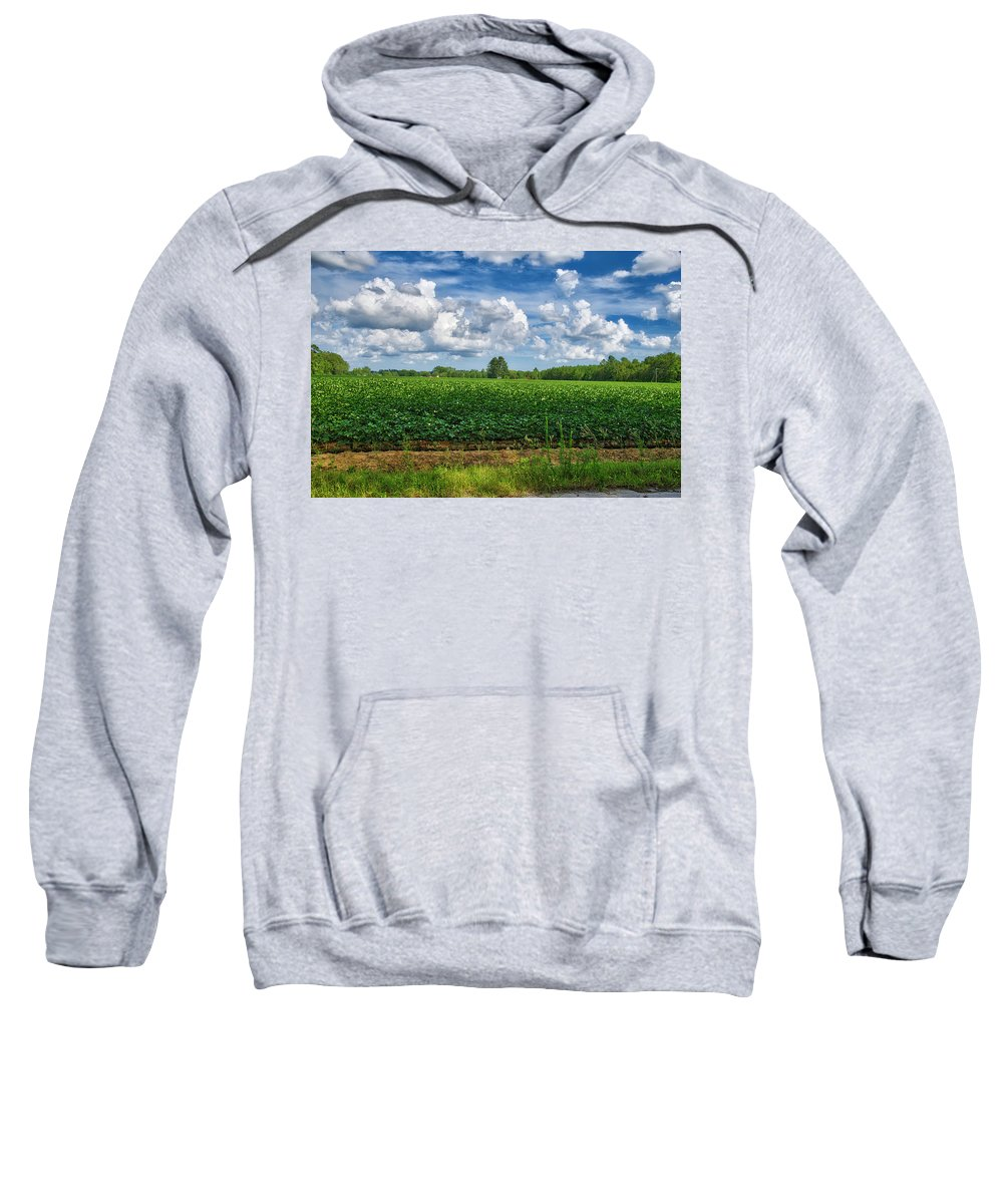 Cotton Sweatshirt featuring the photograph Cotton Fields Of Sc by TJ Baccari