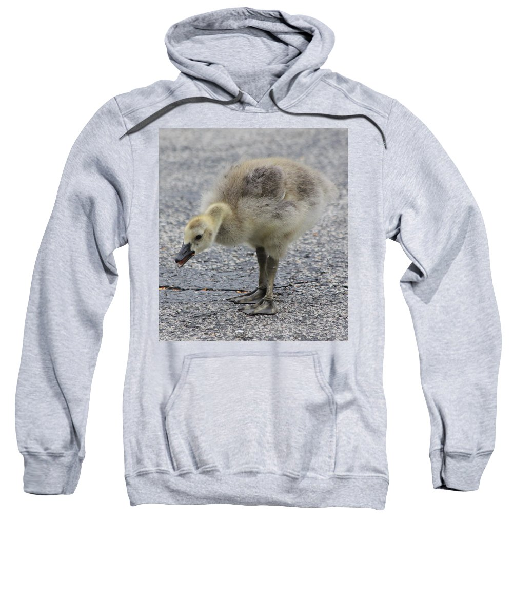Goose Sweatshirt featuring the photograph Cough Cough by Lauri Novak