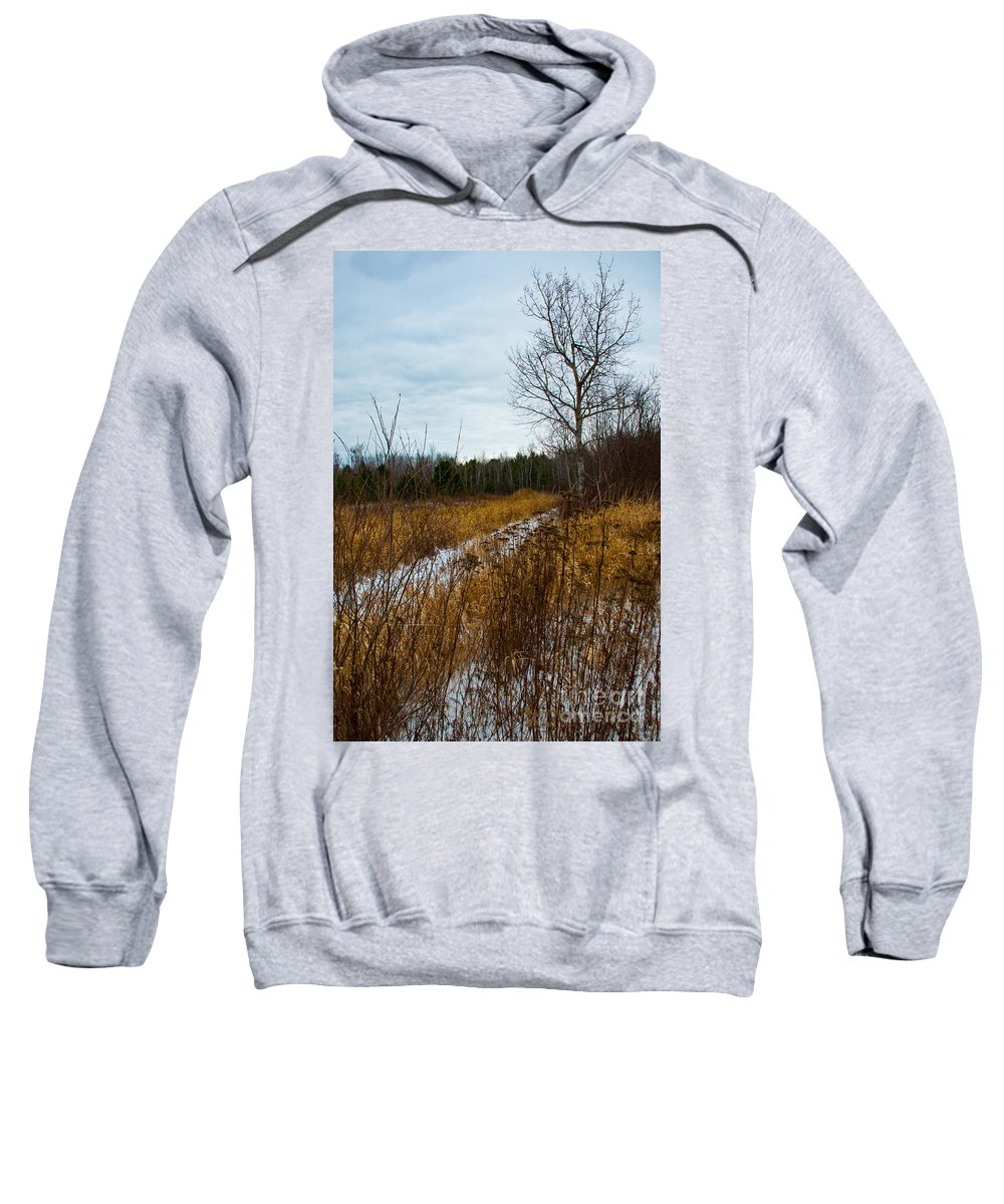 Snow Sweatshirt featuring the photograph Country Winter 4 by Wesley Farnsworth
