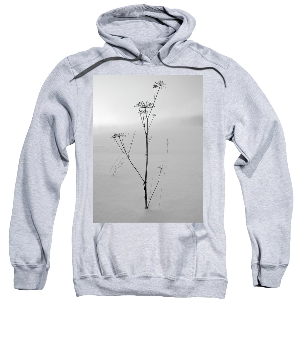 Lehtokukka Sweatshirt featuring the photograph Cow Parsley Bw by Jouko Lehto
