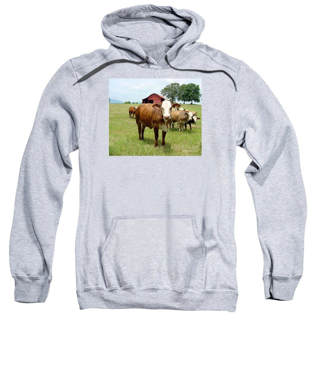 Cow Sweatshirt featuring the photograph Cows8944 by Gary Gingrich Galleries