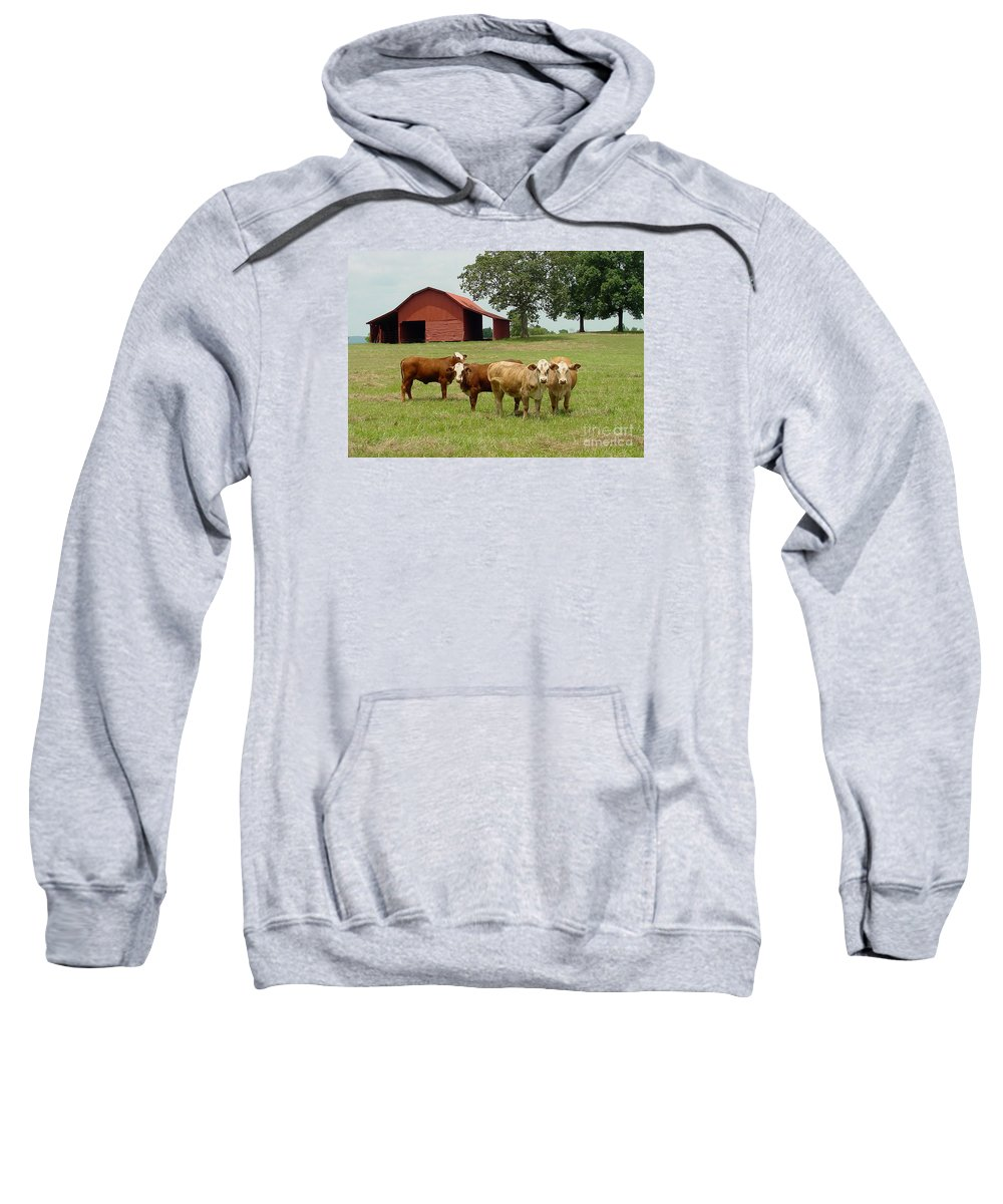 Cow Sweatshirt featuring the photograph Cows8954 by Gary Gingrich Galleries