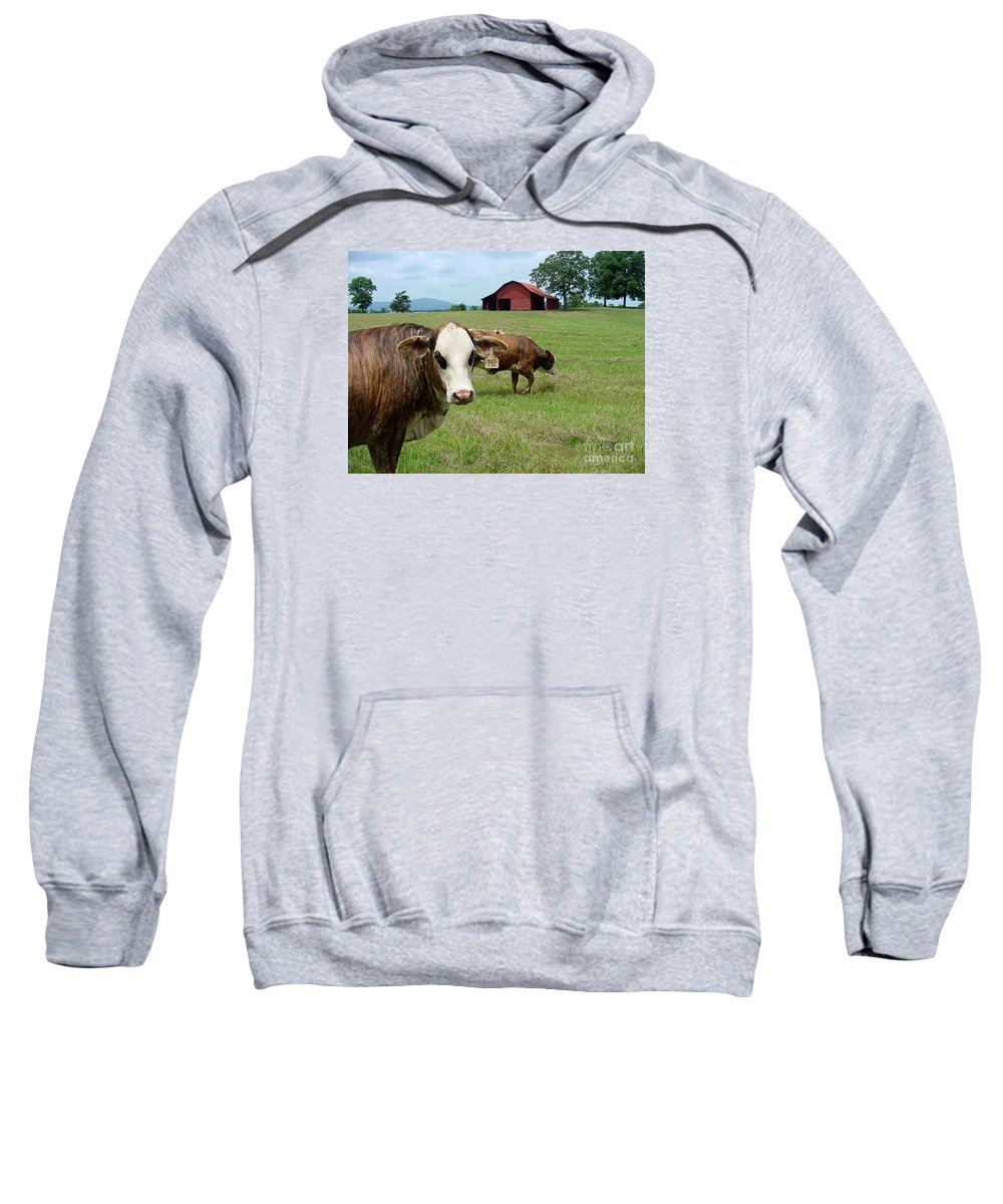 Cow Sweatshirt featuring the photograph Cows8986 by Gary Gingrich Galleries