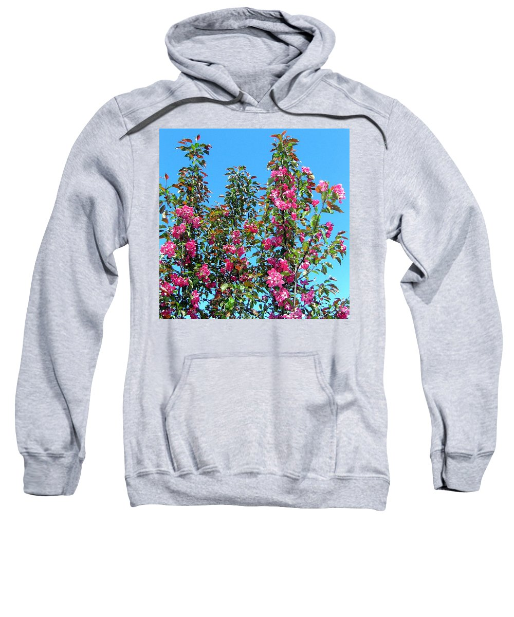 Crab Apple Blossoms Sweatshirt featuring the photograph Crab Apple Blossoms by Will Borden