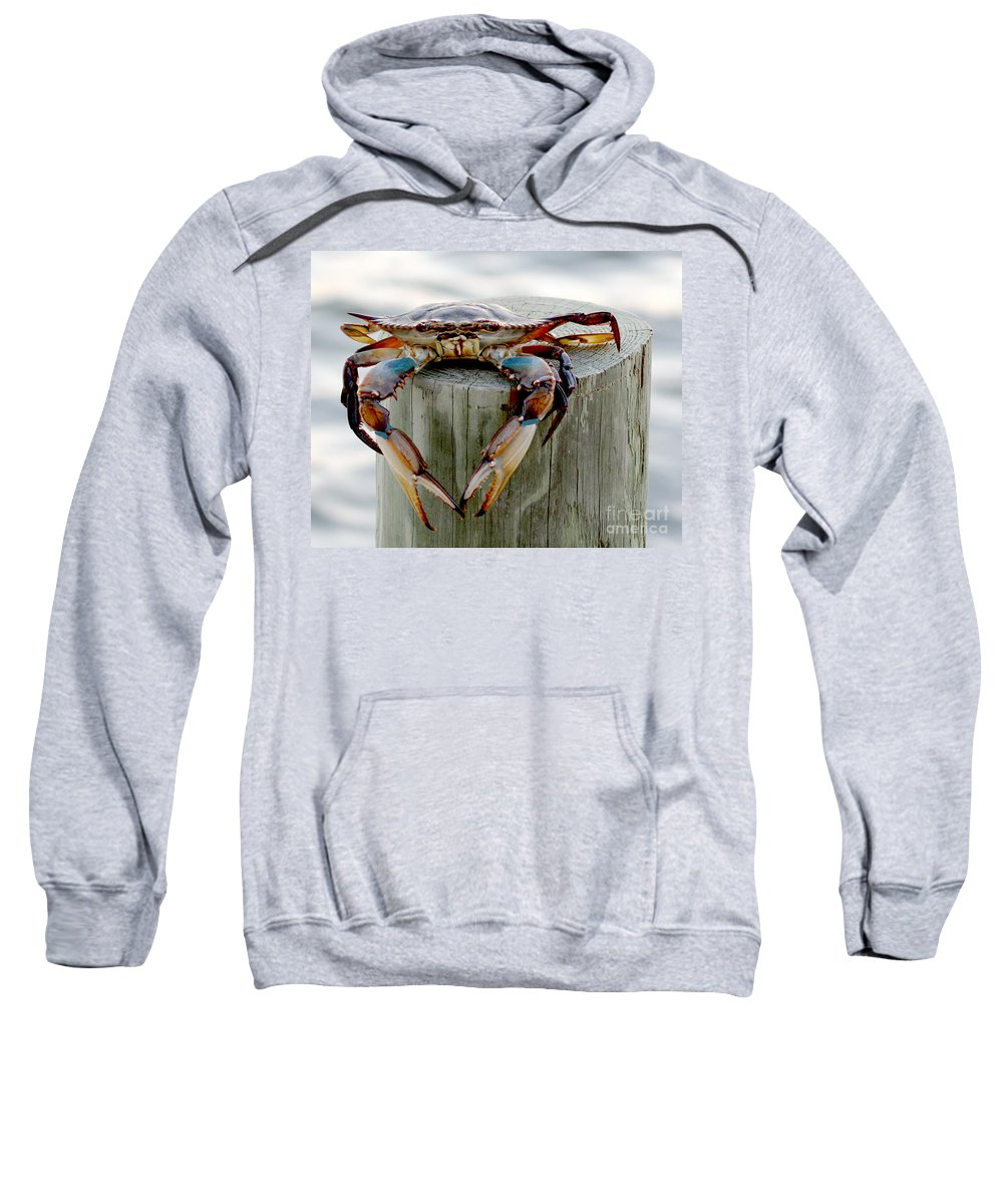 Crab Photography Sweatshirt featuring the photograph Crab Hanging Out by Luana K Perez