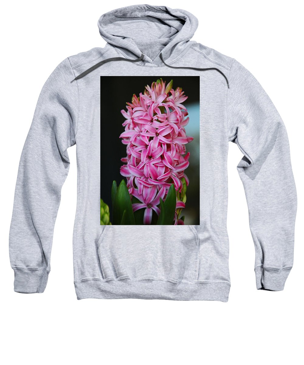 Hyacinth Sweatshirt featuring the photograph Crave The Crazy by Michiale Schneider