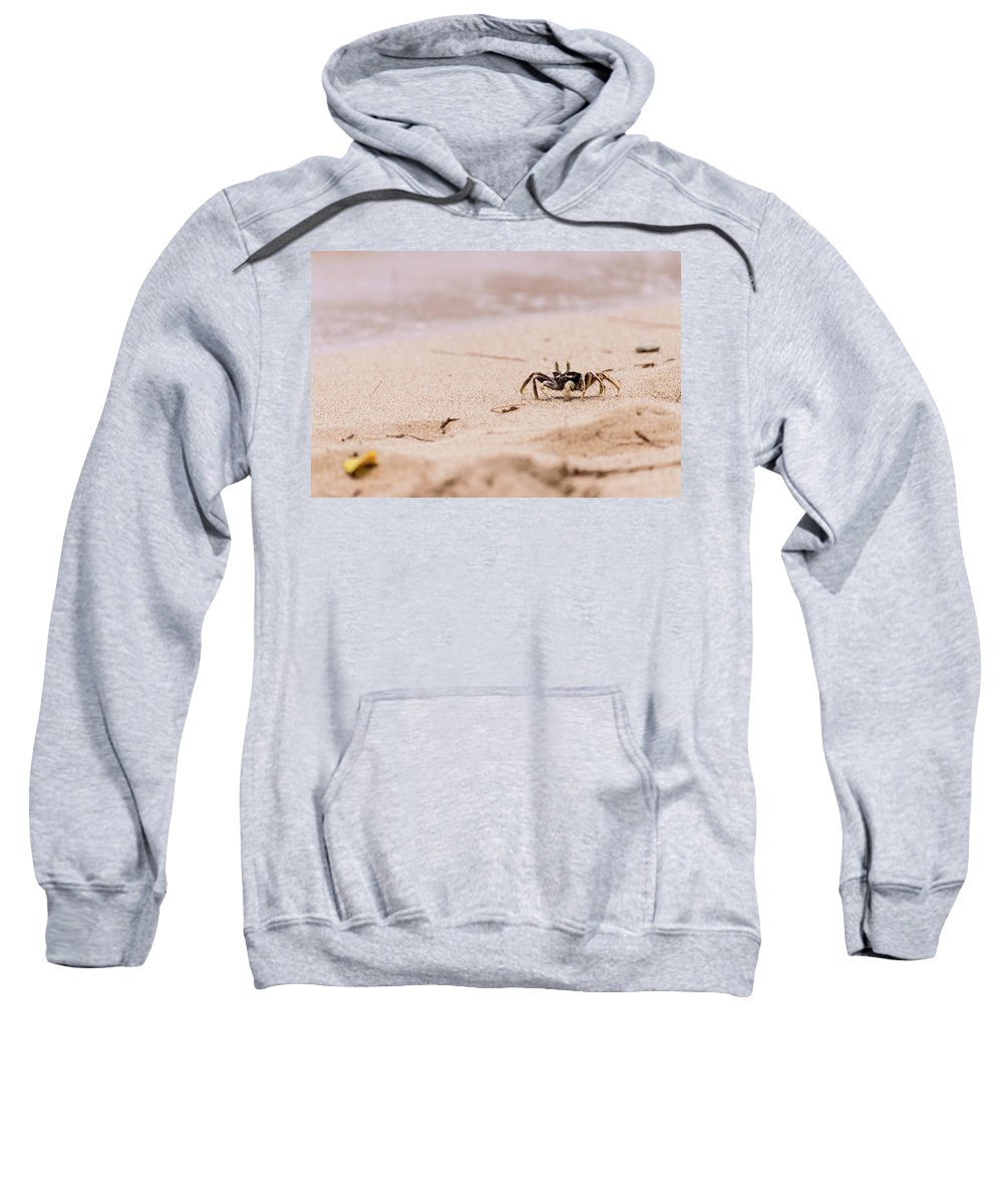 Crab Sweatshirt featuring the photograph Crawling Crabb by Alexandra Simne