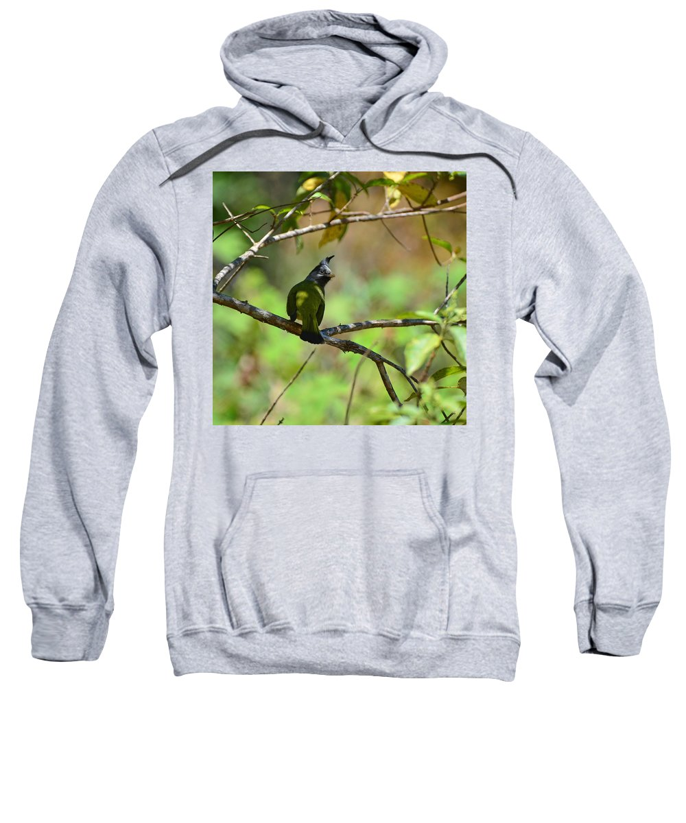 Crested Finchbill Sweatshirt featuring the photograph Crested Finchbill 2 by David Hohmann