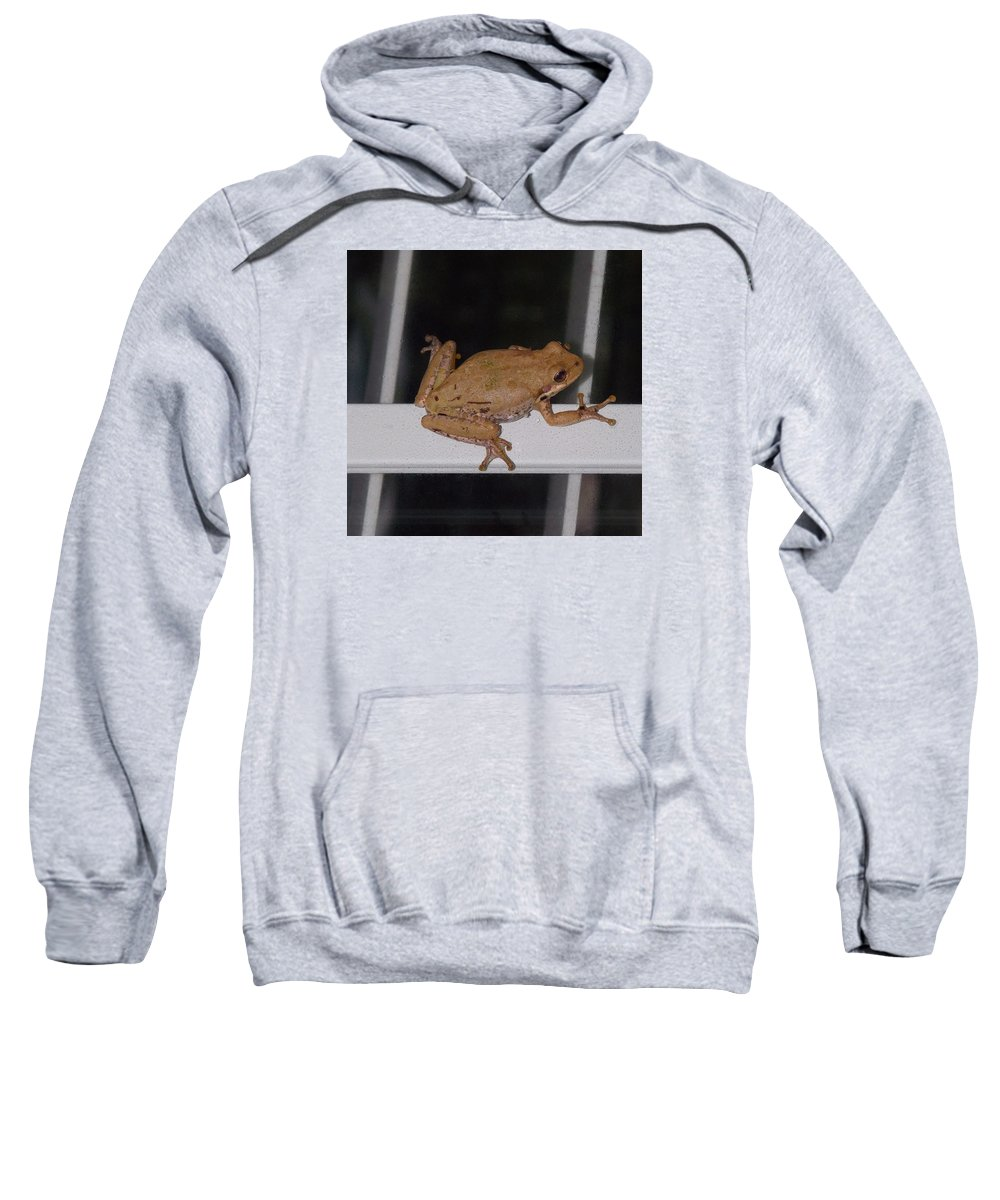 Nature Sweatshirt featuring the photograph Critters 8-1 by Skip Willits