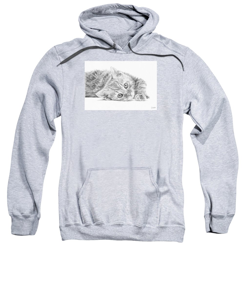 Cat Sweatshirt featuring the drawing Curious Kitten by Frances Vincent