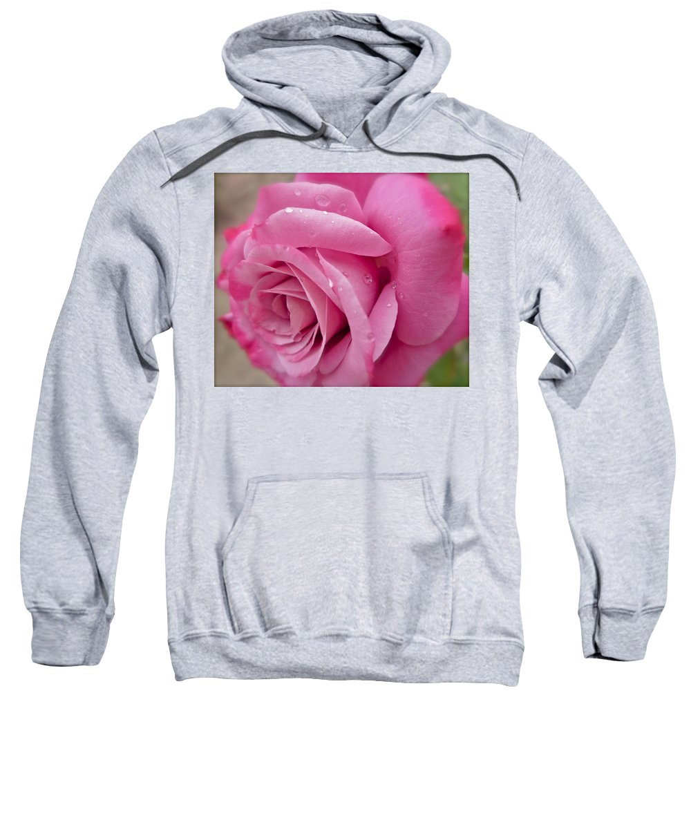 Photograph Of Pink Rose Sweatshirt featuring the photograph Daddy's Rose by Gwyn Newcombe