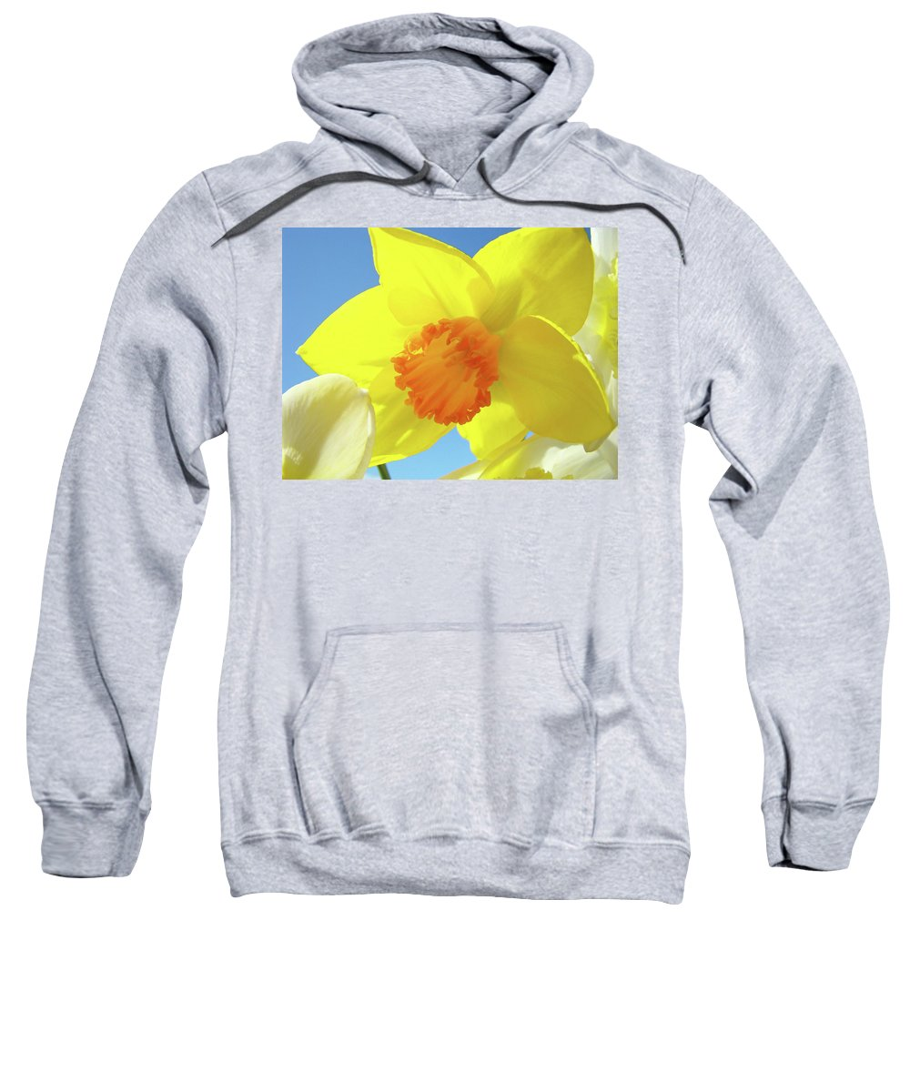 �daffodils Artwork� Sweatshirt featuring the photograph Daffodil Flowers Artwork 18 Spring Daffodils Art Prints Floral Artwork by Baslee Troutman