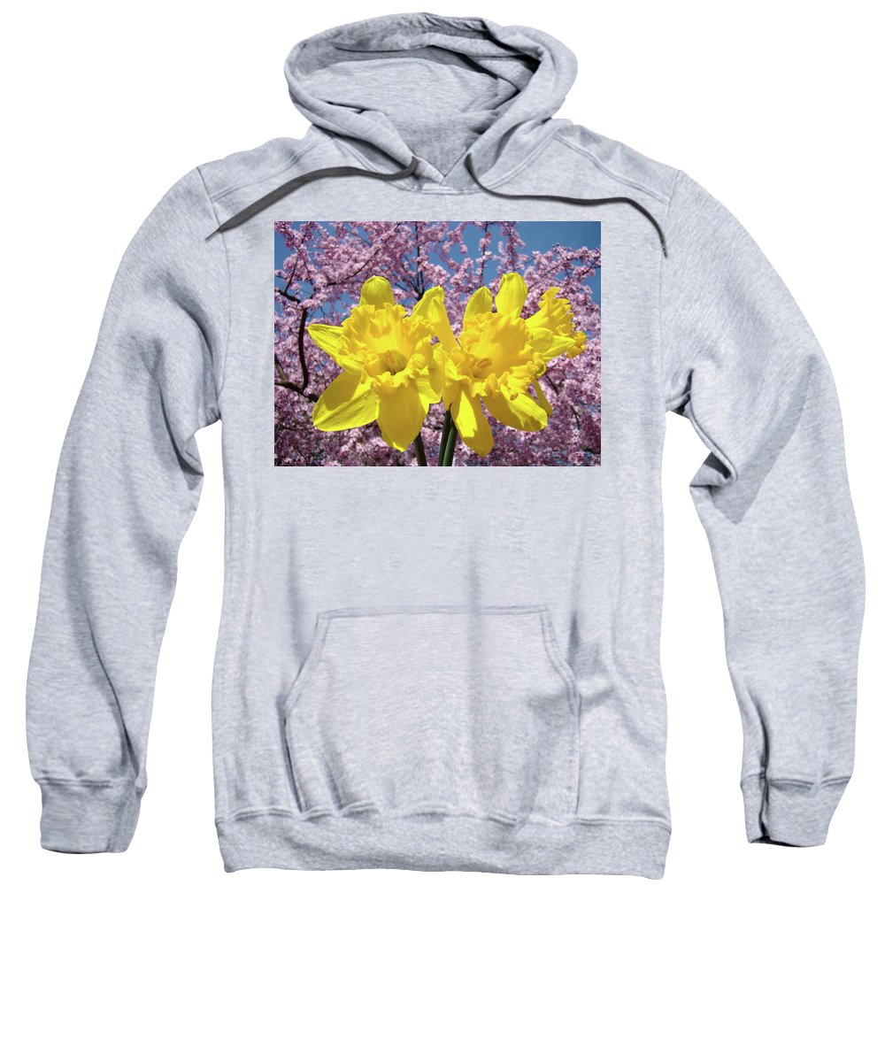 Daffodils Sweatshirt featuring the photograph Daffodil Flowers Spring Pink Tree Blossoms Art Prints Baslee Troutman by Baslee Troutman