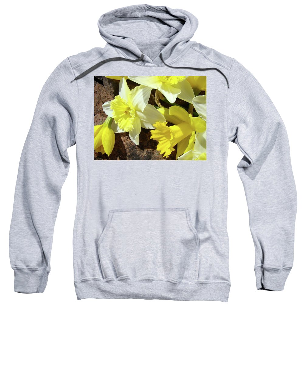 �daffodils Artwork� Sweatshirt featuring the photograph Daffodils Flower Bouquet Rustic Rock Art Daffodil Flowers Artwork Spring Floral Art by Baslee Troutman