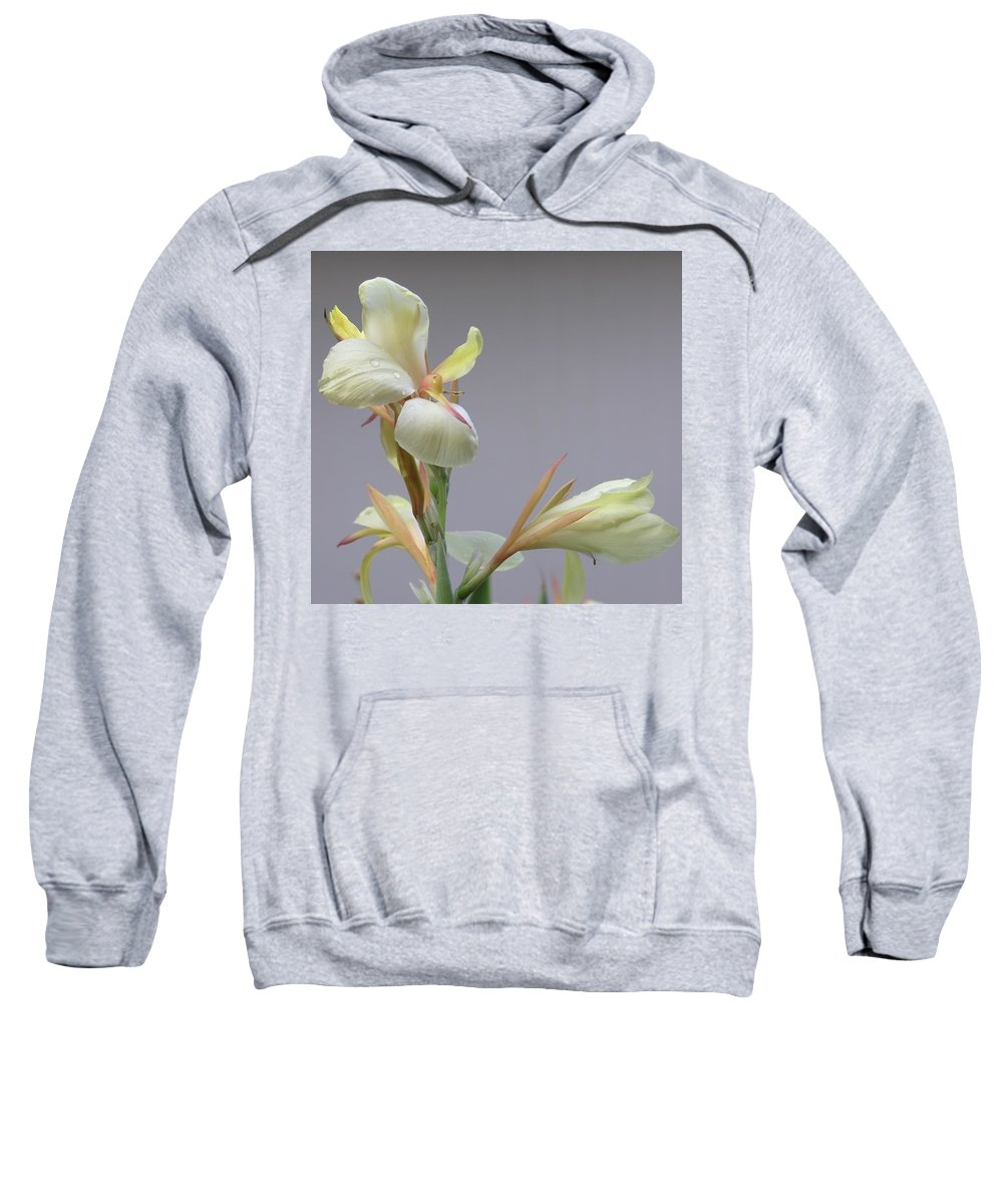 Yellow Sweatshirt featuring the photograph Dainty Orchid by Mary Deal