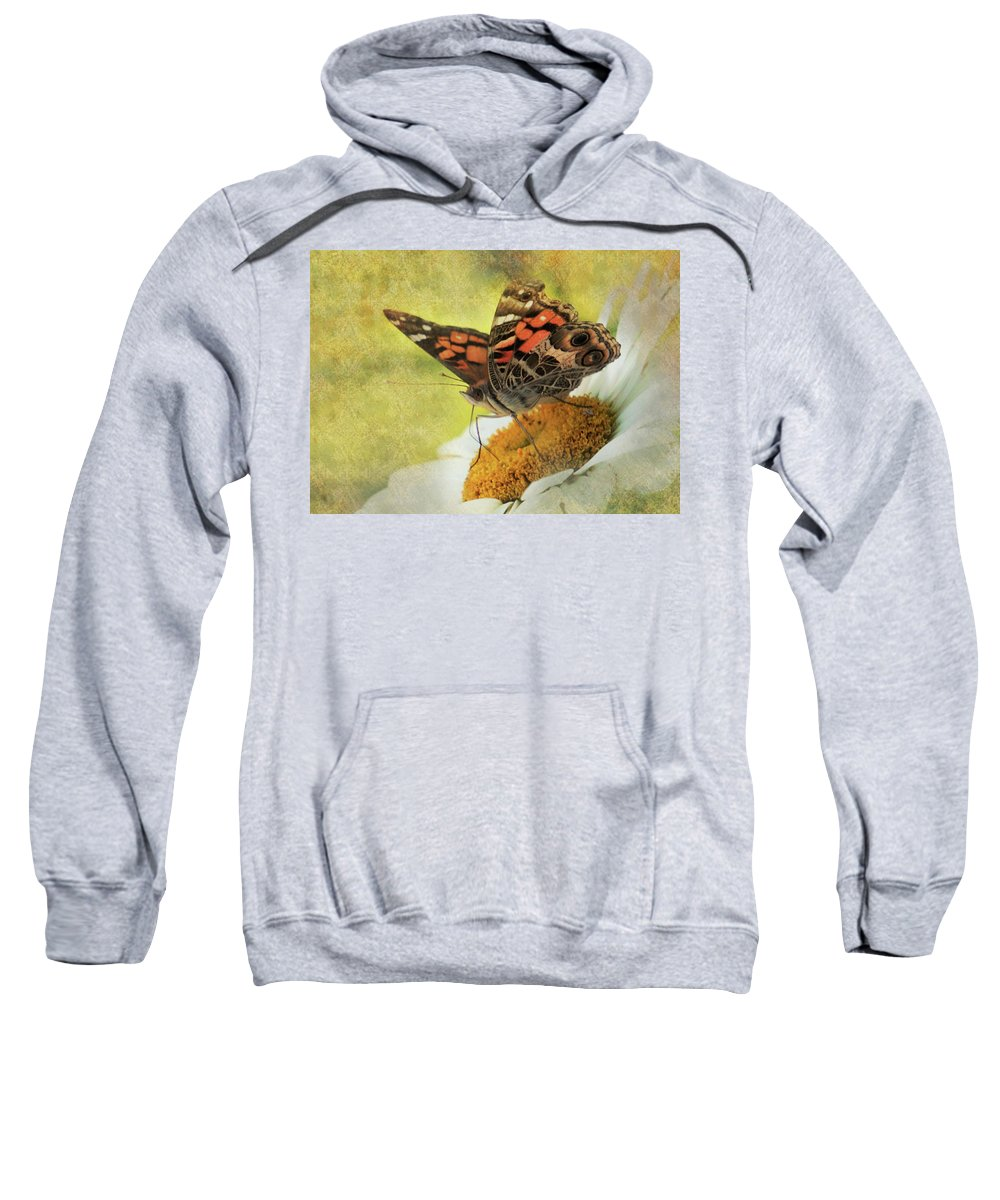 Butterfly Sweatshirt featuring the photograph Daisy Delight by Karen Beasley