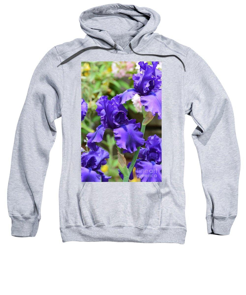 Dancing Blue Irises Sweatshirt featuring the photograph Dancing Blue Irises by Maria Urso