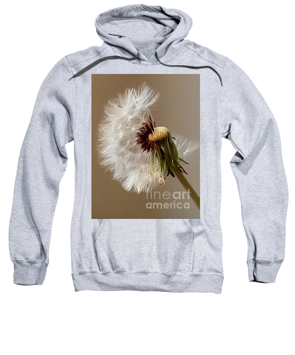 Nature Sweatshirt featuring the photograph Dandelion by Jill Smith